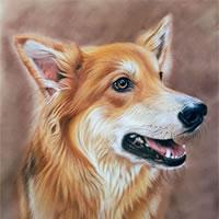 West Sussex Art Tutor - Animal & Human Portraits
