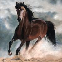 Galloping Horse – Ringwood Art Society – Pauline Scott – Pastel Painting