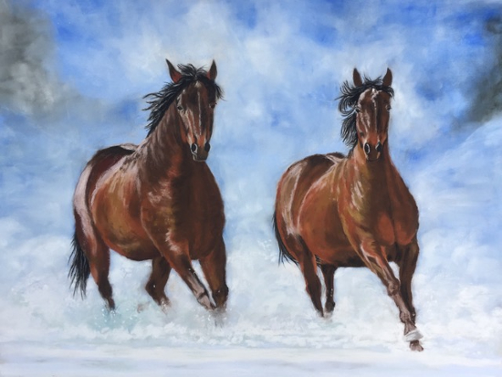 Horses - Snow Patrol - Equestrian Art - Ringwood Hampshire Animal Artist Pauline Scott