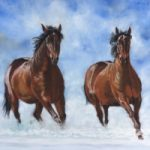 Horses – Snow Patrol – Equestrian Art – Ringwood Hampshire Animal Artist Pauline Scott