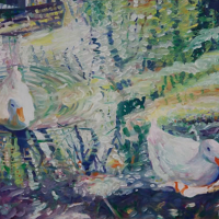 Ducks on Pond – Hartley Wintney Hampshire Fine Artist and Art Tutor Nicholas Walsh