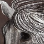 Horse Portrait – New Forest Artist – Equine Art by Jean Baylis