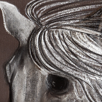 Horse Portrait - New Forest Artist - Equine Art by Jean Baylis