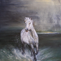 Horse in Sea Lit by Moonlight – Equine Art – Ringwood Art Society Artist Jean Baylis