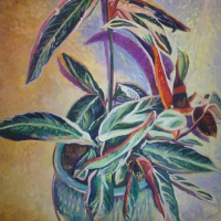 Houseplant – Hartley Wintney Hampshire Fine Artist and Art Tutor – Nicholas Walsh