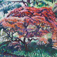 Tree – Ramster Gardens Chiddingfold Surrey – Hartley Witney Artist Nicholas-Walsh