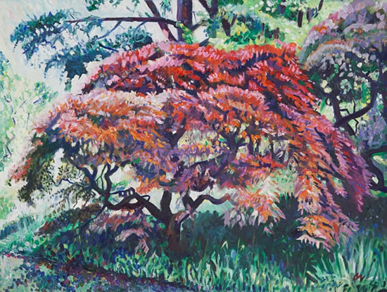 Tree - Ramster Gardens Chiddingfold Surrey - Hartley Witney Artist Nicholas-Walsh