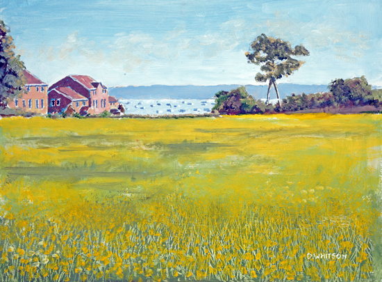 Buttercup Meadow Priddys Hard Gosport - Fareham Art Group Artist David Whitson