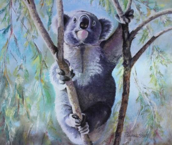 Koala - Australia - After the Fires - Wildlife Artist and Ringwood Art Society member Pauline Scott