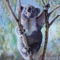 Koala – Australia – After the Fires – Wildlife Artist and Ringwood Art Society member Pauline Scott