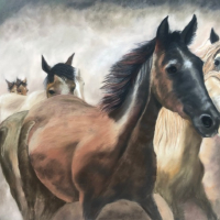 Wild Horses – Society of Equestrian Artists member Pauline Scott – Ringwood Hampshire Pastel Animal Portrait Artist