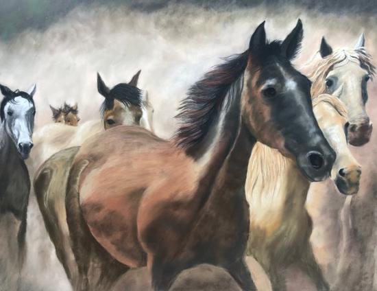 Wild Horses - Society of Equestrian Artists member Pauline Scott - Ringwood Hampshire Pastel Animal Portrait Artist