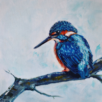 Kingfisher – Series of Bird Prints – Wildlife Artist from Warsash working in Oils – Lesley Stevens