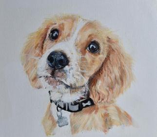 Pet Portrait in Oils - Art Gallery - Warsash Hampshire Artist Lesley Stevens