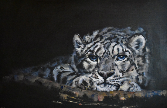 Snow Leopard in Cave - Oil on Canvas - Warsash Animal Portrait Artist Lesley Stevens