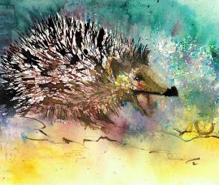 Hedgehog Animal Portrait - Petersfield Fine Artist Alison Udall