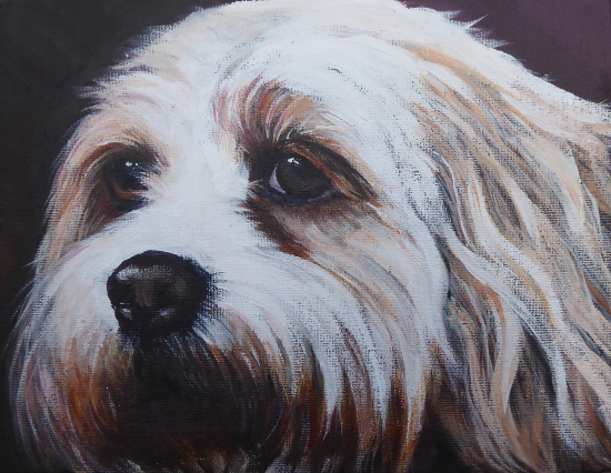Pet Portrait - Dog - Bella - Petersfield Artist Alison Udall