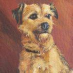 Pet Portrait – Dog – Scamp – Petersfield Animal Artist Alison Udall