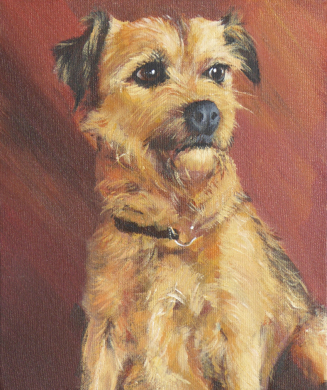 Pet Portrait - Dog - Scamp - Animal Artist Alison Udall