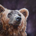 Bear – Original Oil Painting – Romsey Hampshire Wildlife Artist Debbie Goulden