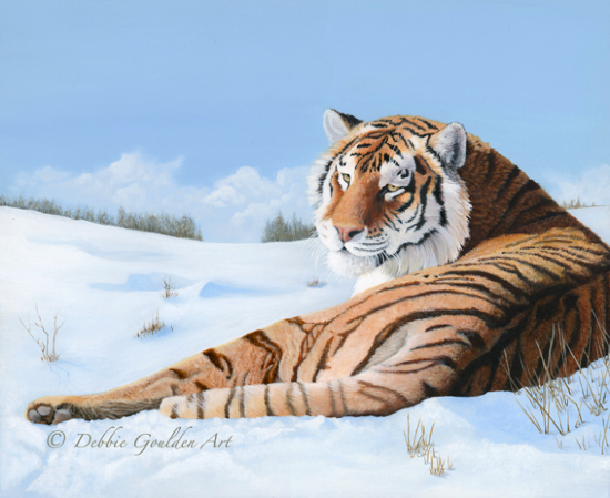 Siberian Tiger in Snow - Oil Painting - Romsey Hampshire Artist Debbie Goulden