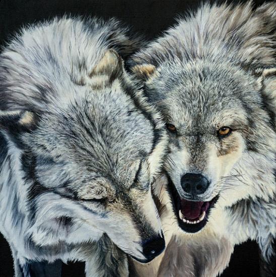 Wolves - Original Oil Painting - Romsey Hampshire Wildlife Artist Debbie Goulden